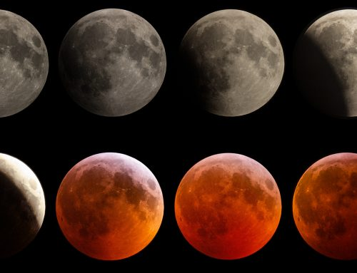 Lunar Eclipse 2019-01-29