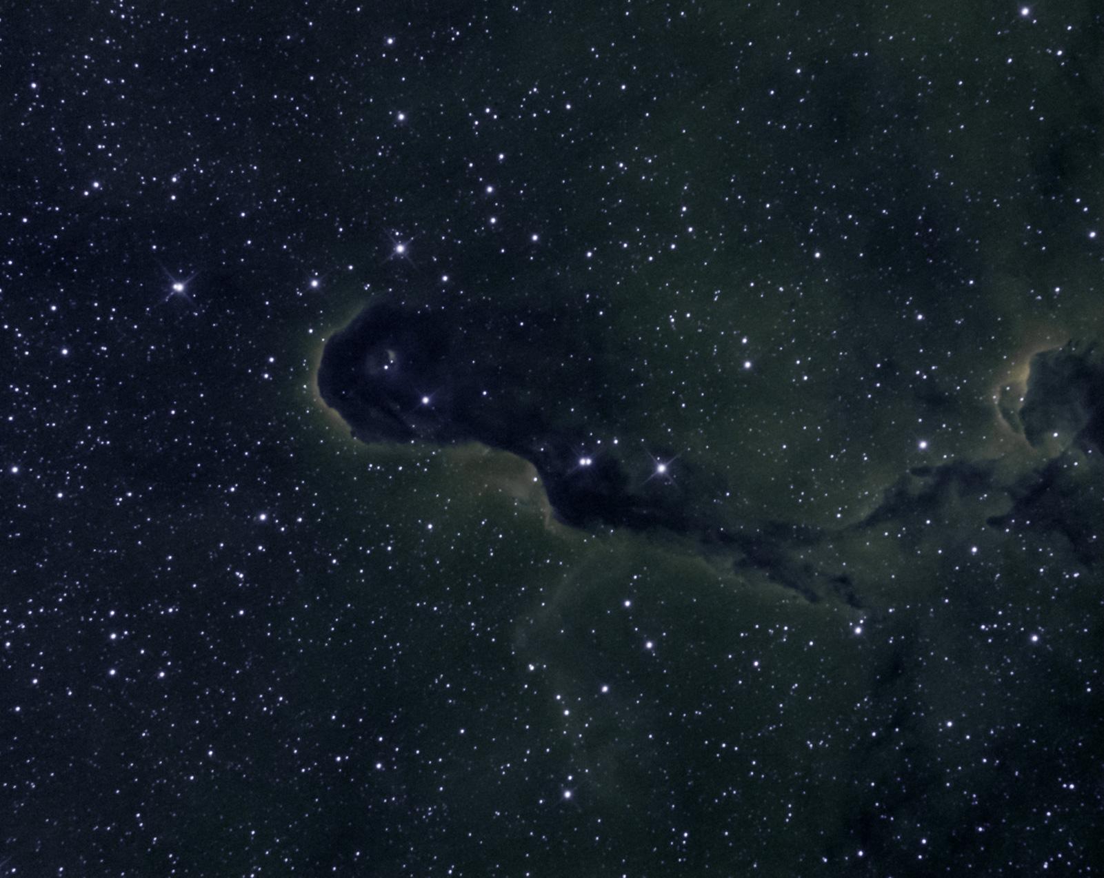 IC1396 Elephant's Trunk Nebula