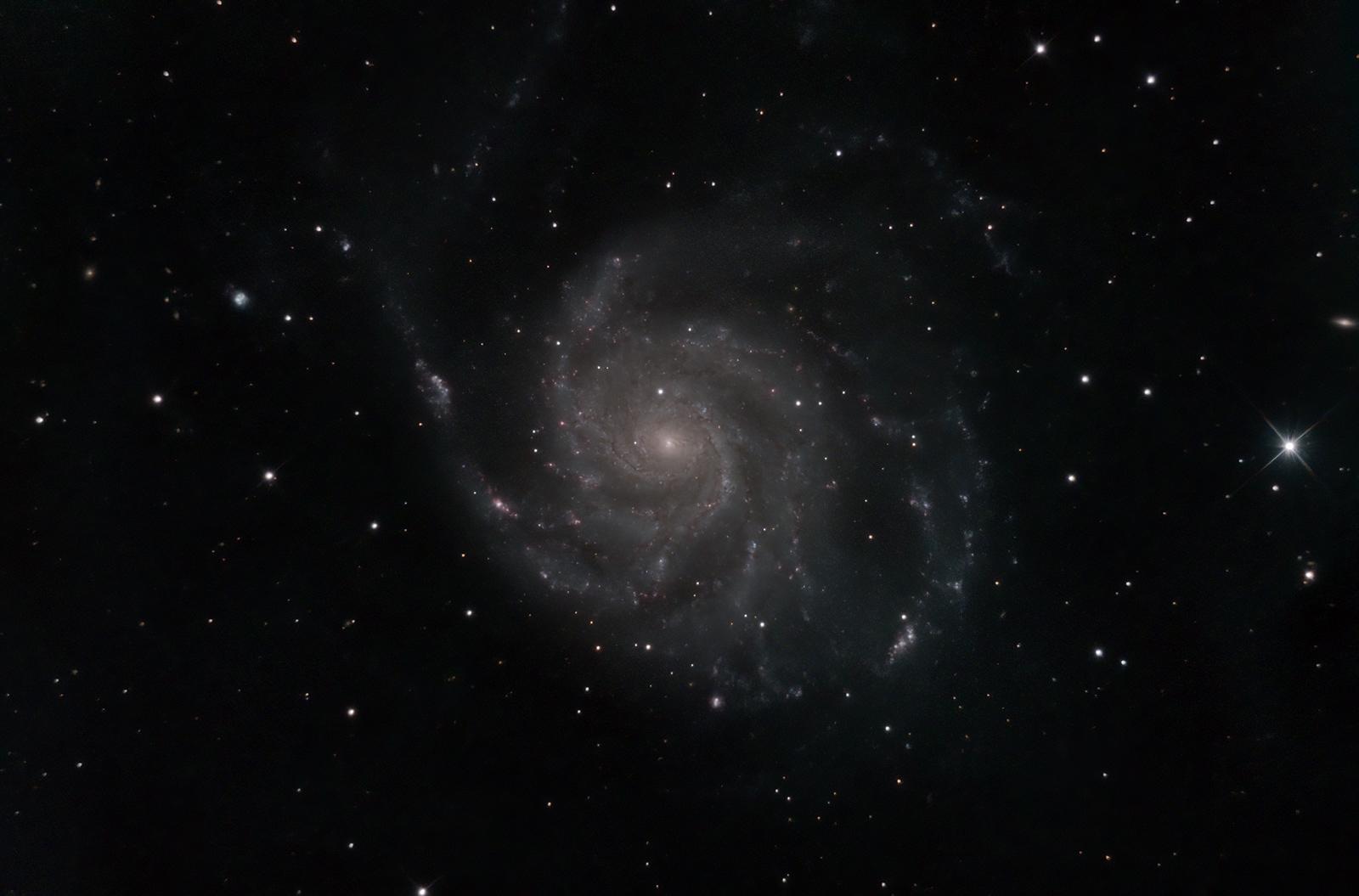 M101 (NGC 4321)