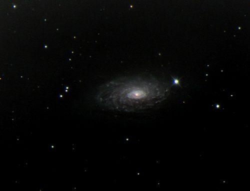 M63 (NGC 5055)