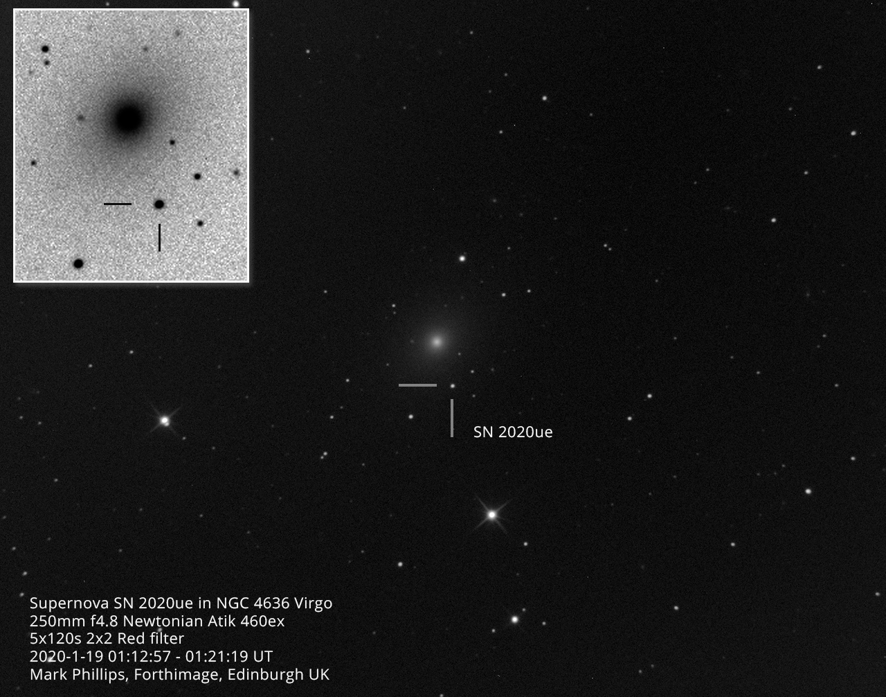 Supernova SN 2020ue in NGC 4636
